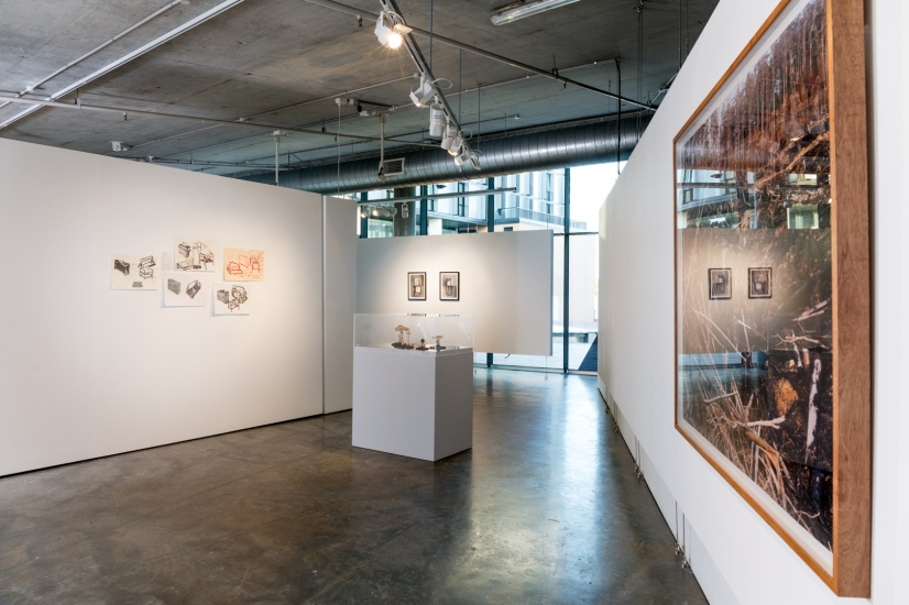(left to right) Bonita Bub, Plans for display of fungi and found German love letter, pen and ink on paper, dimensions variable, 2016. Macleay Museum fungi models in the vitrine. Consuelo Cavaniglia, Untitled, 2016, airbrushed pigment ink on archival paper, 760 x 560 mm. David Stephenson, Mount Wedge I, Tasmania, Photographic print, 2005 (from the USU Art Collection). Image by Document Photography.