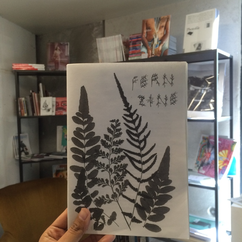 Fern Zine by Vanessa Berry