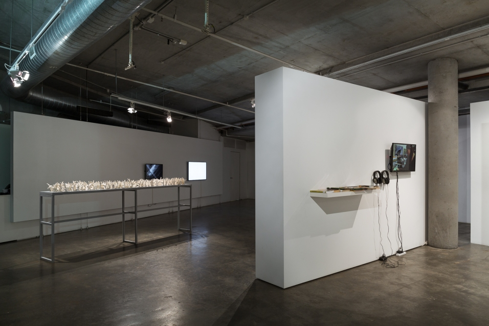 Gallery 2 // all matter has a past :: Penny Coss (Perth), Sean O'Connell (Sydney), and Clare Peake (Broome) :: curated by Consuelo Cavaniglia. Photograph by Document Photography