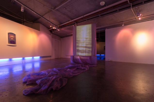 Jodie Whalen, Your love becomes Ghosts, 2018, SD video (loop) Organza, hand dyed and machine dyed muslin, copper, nylon rope, dimensions variable.